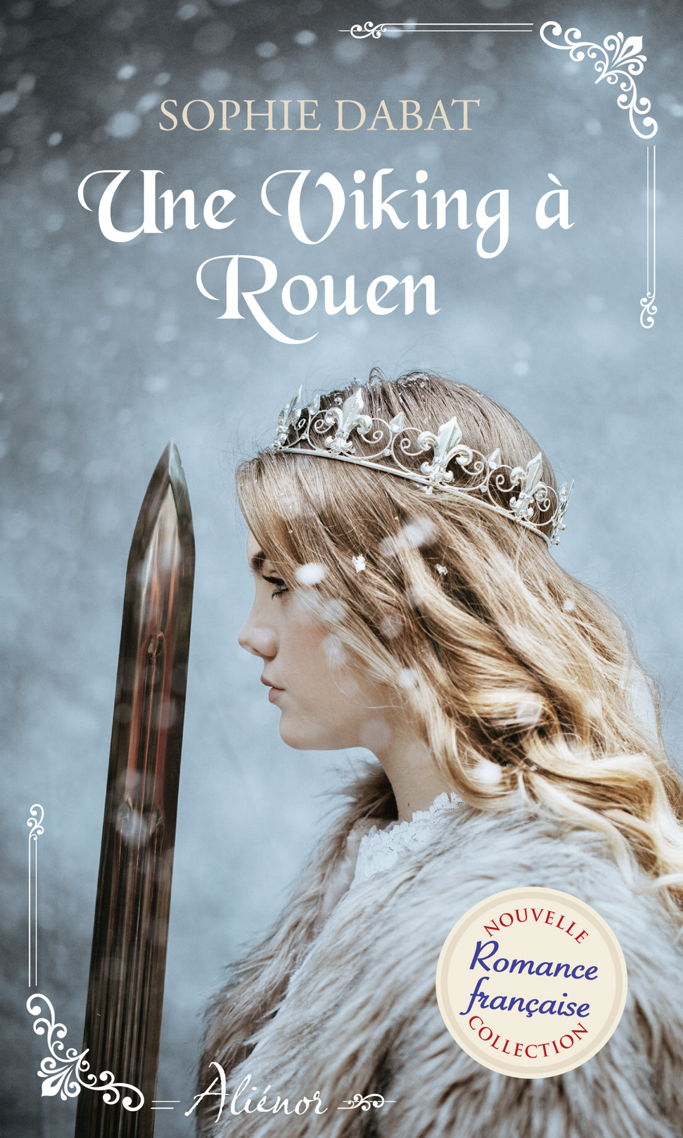Image de couverture (Une Viking à Rouen)