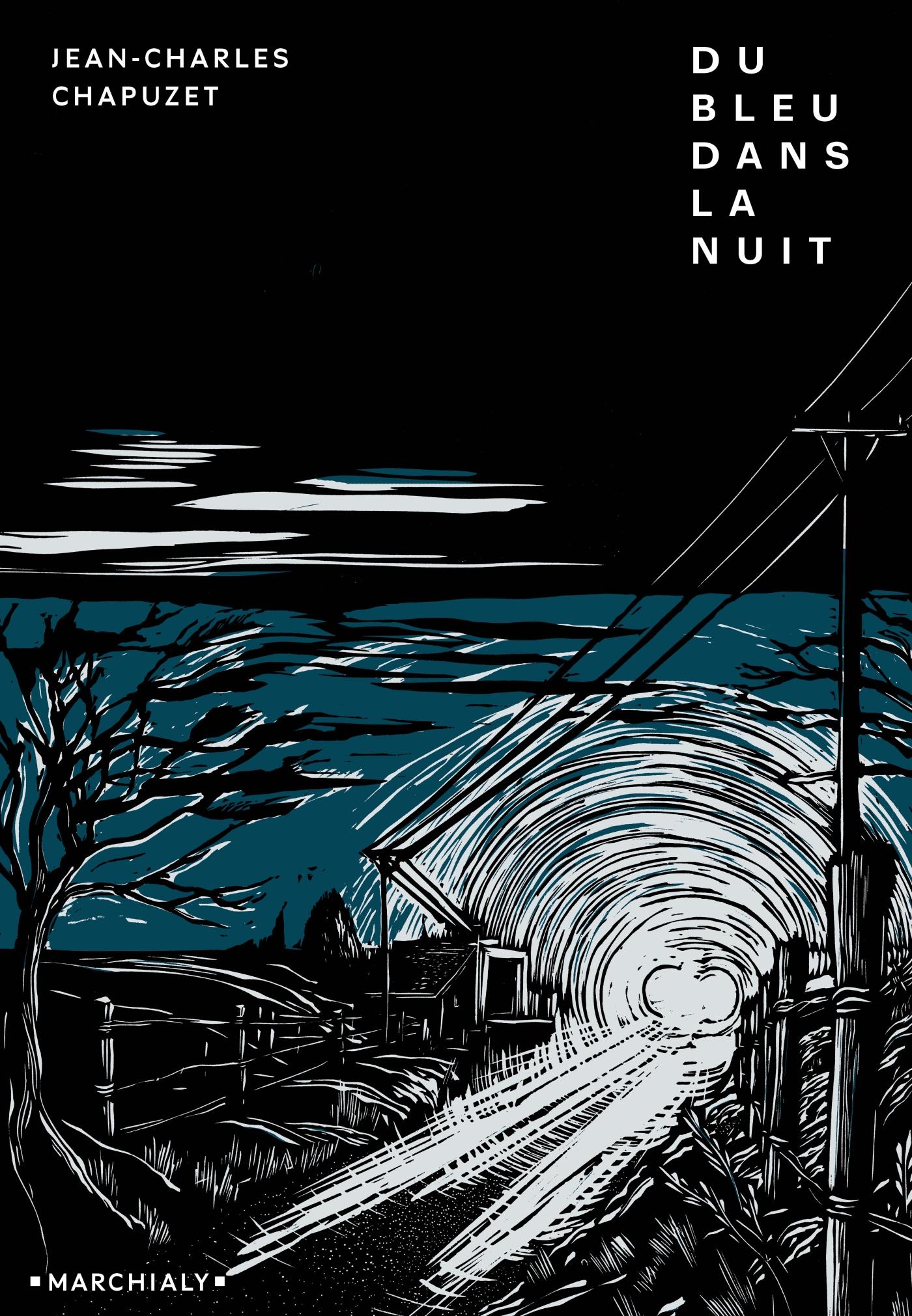 Du bleu dans la nuit | Chapuzet, Jean-Charles. Auteur